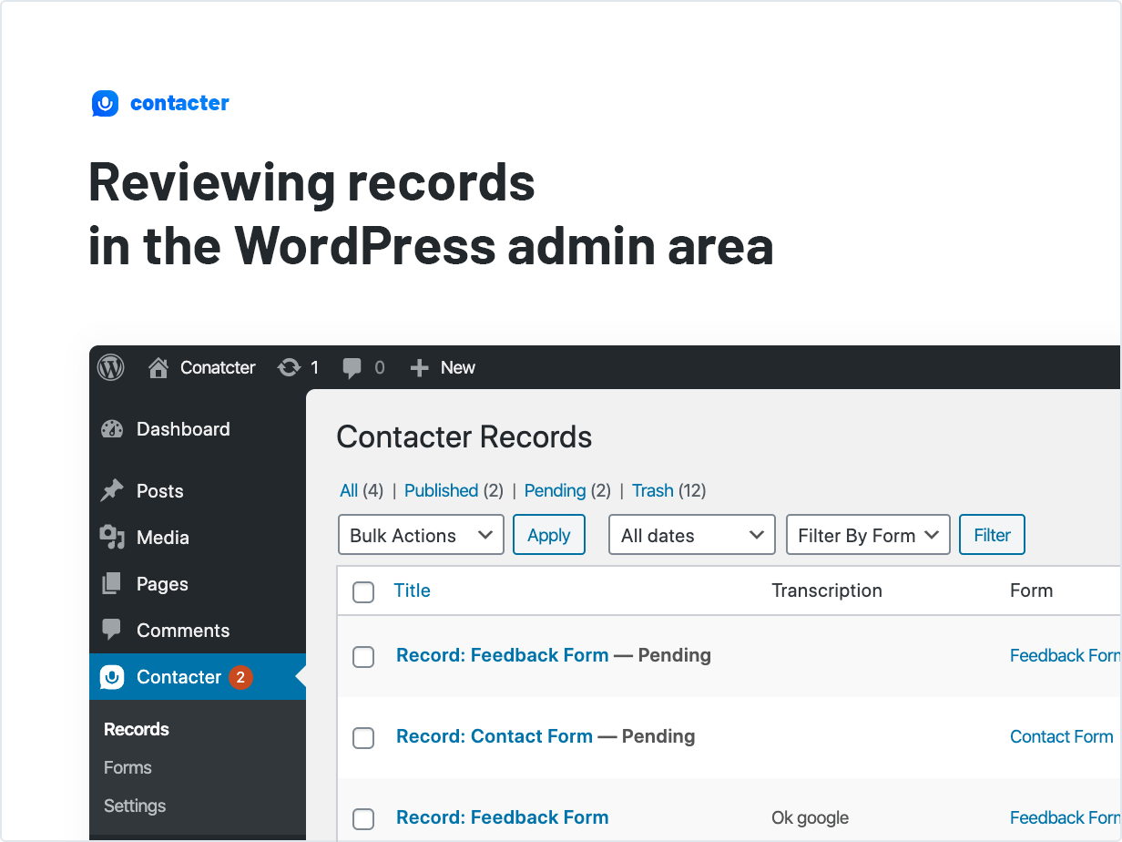 Reviewing records in the WordPress admin area
