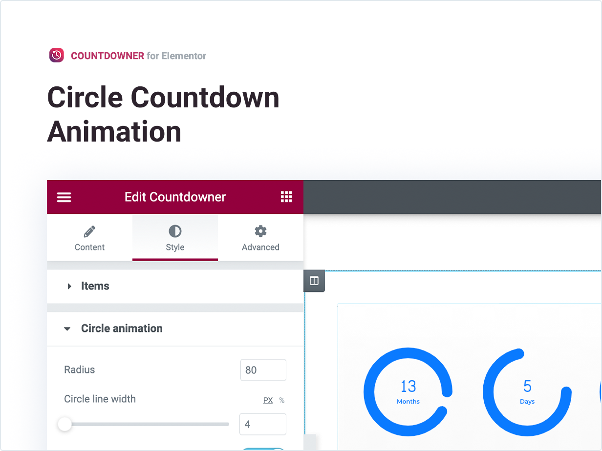 Circle Countdown Animation
